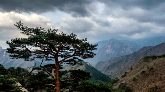 Timelapse-de-árboles-y-acantilados-Parque-Nacional-de-Seoraksan-Corea-del-sur