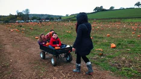 Children-choosing-pumpkins-from-a-halloween-pumpkin-farm