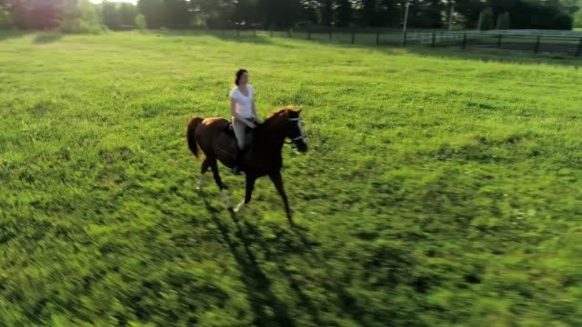 Una-mujer-joven-cabalga-trote-un-caballo-marrón-disparo-orbital-cámara-lenta