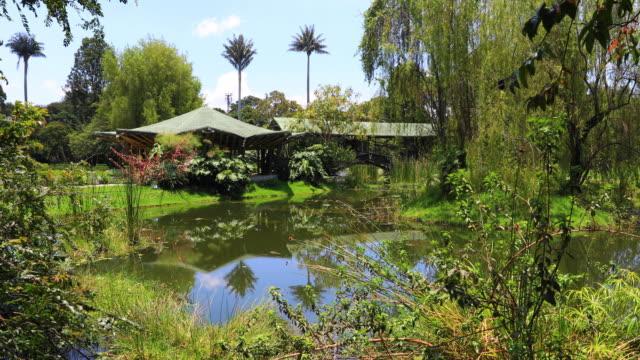 Estanque-de-Bogotá-y-la-naturaleza-en-el-jardín-botánico