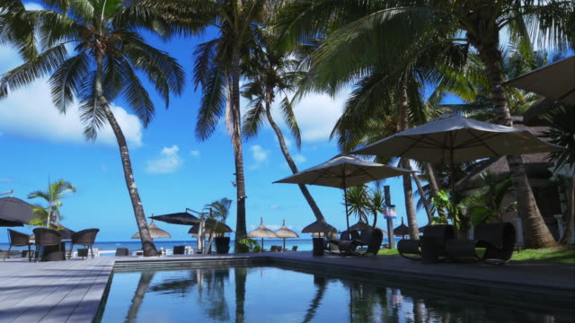 4K-Holiday-pool-&-palm-trees-resort