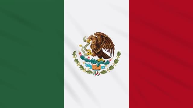 Mexico-flag-waving-cloth-background-loop