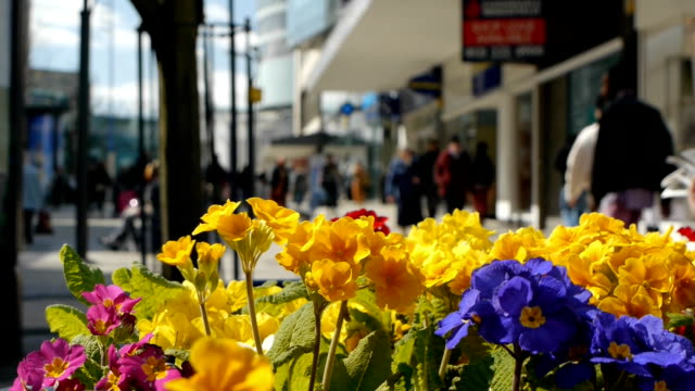 Shopping-Centre-with-Spring-Flowers-