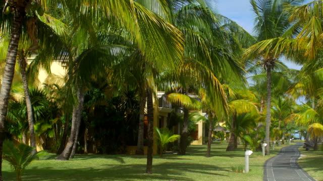 Vista-de-pista-parque-y-asfalto-árboles-de-palm-Isla-Mauricio