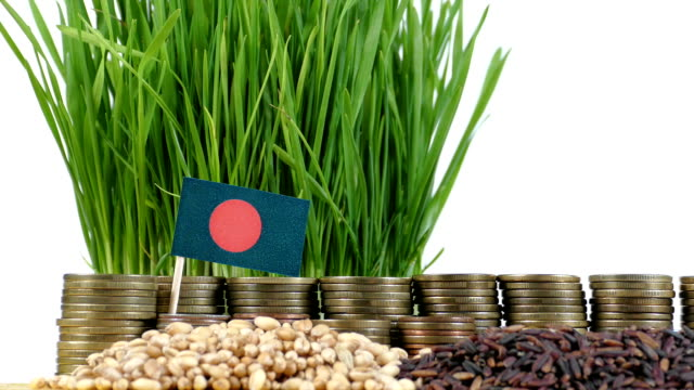 Bangladesh-flag-waving-with-stack-of-money-coins-and-piles-of-wheat