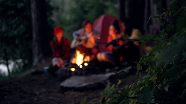Blurred-footage-of-tourists-friends-sitting-around-bonfire-in-forest-playing-the-guitar-and-singing-getting-warm-near-fire-Focus-on-tree-branch-in-foreground-