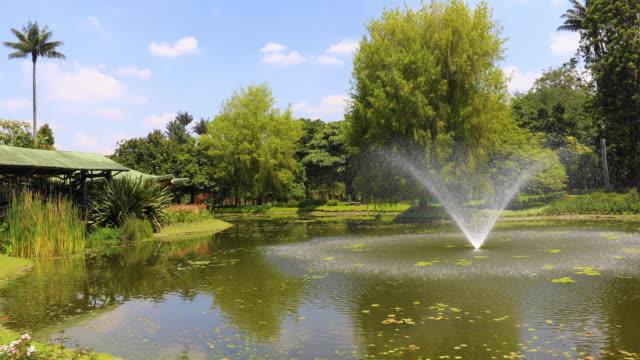 Estanque-de-Bogotá-con-fuente-y-plantas-tropicales-en-un-jardín-Pubblico
