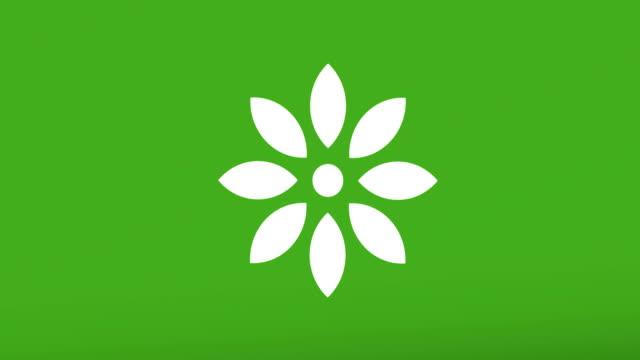 animation---modern-flower-glitch-background