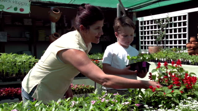 Mother-and-child-selecting-seedlings-at-a-nursery-South-Africa