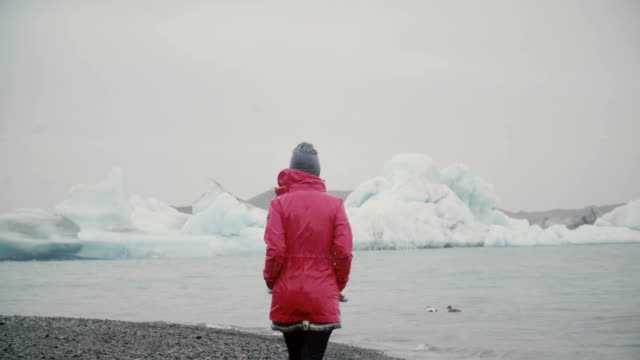 Vista-trasera-del-atractivo-joven-caminando-en-la-laguna-de-hielo-Mujer-pensativa-explorando-la-famosa-vista-en-Islandia-solamente