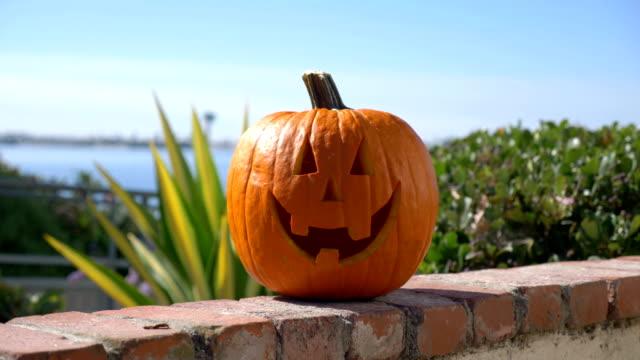 Happy-Halloween-Kürbis-Sommer-Hintergrund-in-Zeitlupe-4K-60fps