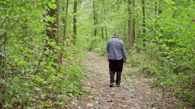 Zombis-están-caminando-por-el-bosque-