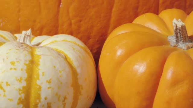 Macro-Dolly-in-Towards-Fall-Pumpkins