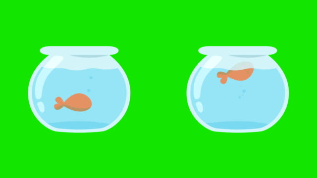 Cartoon-Fish-Tanks-With-Dead-Fish-And-Live-Fish