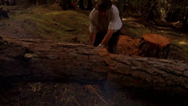 woodcutter-trees-cut-in-Alta-Badia-Dolomites