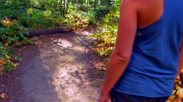 Active-Woman-Walks-Down-Beautiful-Forest-Path-Healthcare-Healing-Landscape