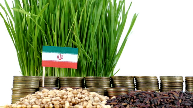 Iran-flag-waving-with-stack-of-money-coins-and-piles-of-wheat-and-rice-seeds