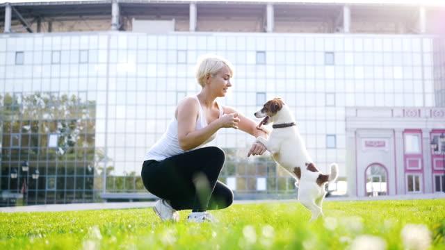 Joven-formación-poco-lindo-jack-terrier-russel-en-el-parque-cámara-lenta