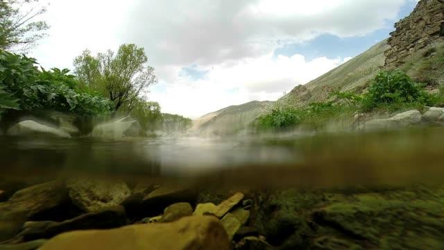 Underwater-landscape