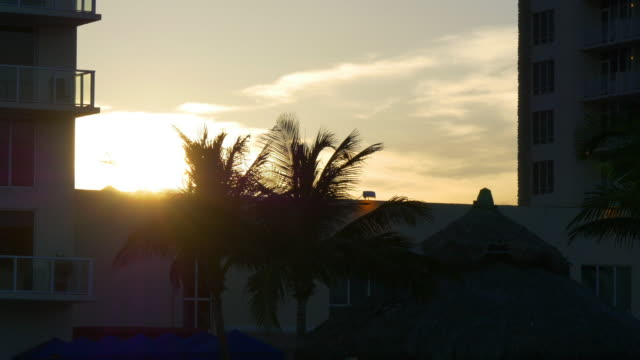 Estados-Unidos-al-atardecer-playa-Miami-souyj-Palma-viento-movimiento-de-4-k-florida-Vista-del-apartamento