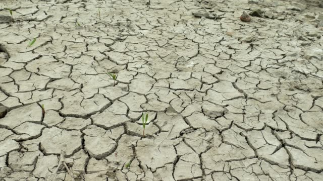 Dry-lake-with-natural-texture-of-cracked-clay