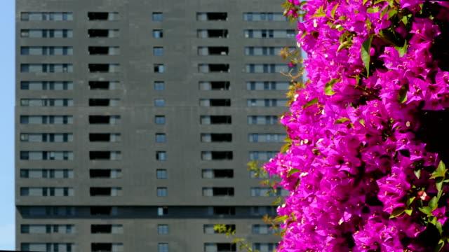 Sustainable-city-
