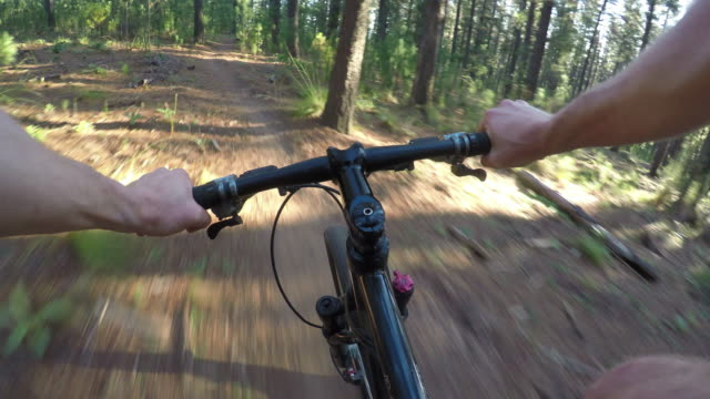 Mountain-biker-rides-down-a-fast-forest-trail