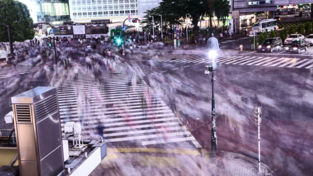Tokyo-Japan-Nighttime-Timelapse-of-people-walking-the-Shibuya-crossing-during-the-night