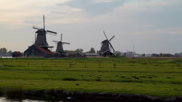 The-greeny-grass-fields-of-the-village-of-Zaanse-Schans