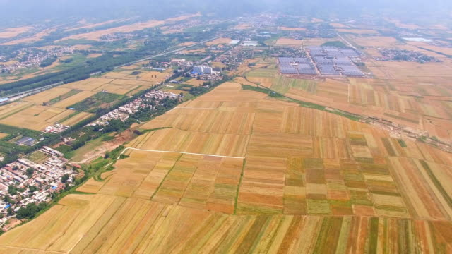 Aerial-view-of-Wheat-field-and-village-Xi-an-China-