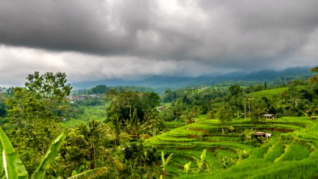 Rice-terrace-and-moody-clouds-time-lapse