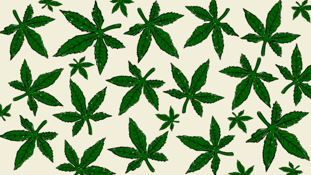Animación-de-hojas-de-cannabis-dibujado-a-mano-Antecedentes-de-la-marihuana-medicinal