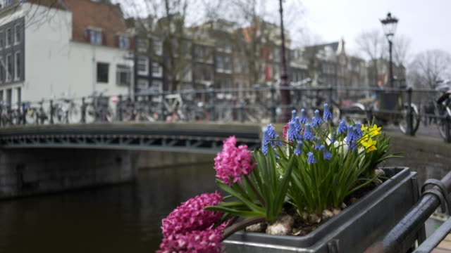 Decorated-canal-embankment-in-Amsterdam