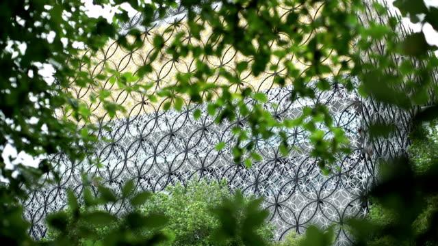 Birmingham-Bibliothek-Außenansicht-hinter-tree-leaves-