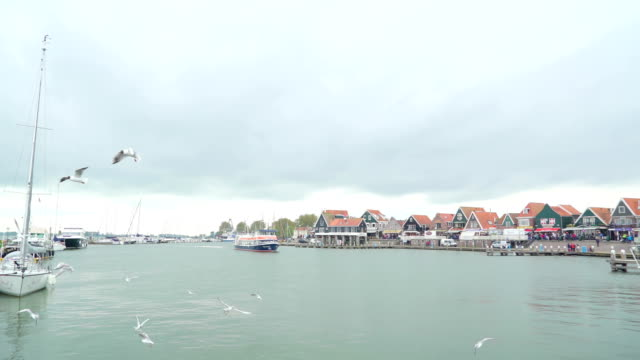 Birds-flying-over-the-sea-in-the-coast-of-Volendam