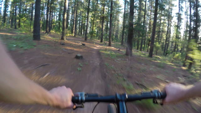 Mountain-biker-POV