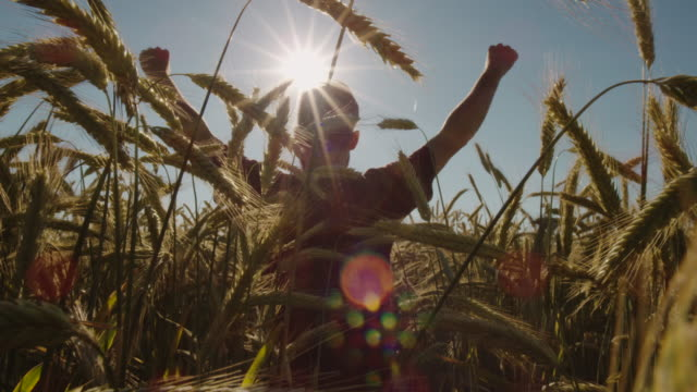 Adult-standing-in-Beautiful-wheat-field-and-raising-hands-with-blue-sky-and-epic-sun-light---shot-on-RED