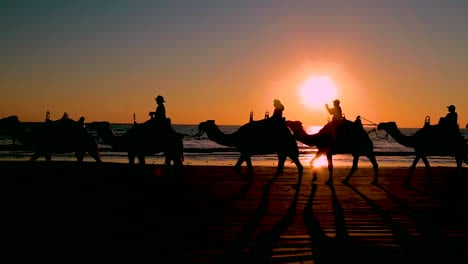 A-camel-train-crosses-Broome-Beach-in-Western-Australia-at-sunset-1