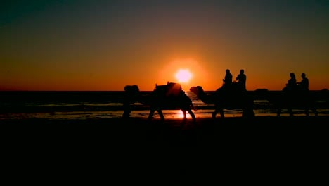 A-camel-train-crosses-Broome-Beach-in-Western-Australia-at-sunset-2