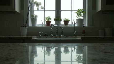 Potted-plants-adorn-a-window-and-are-reflected-in-the-countertop-in-a-kitchen