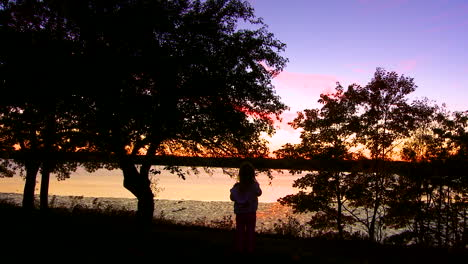 A-person-stands-before-a-beautiful-lake-at-dusk