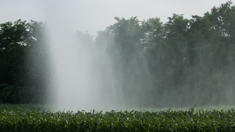 Farm-Water-Sprinkler-4K-03