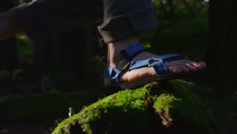 Closeup-of-feet-as-they-climb-over-a-moss-covered-log-in-a-forest