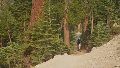 A-mountain-biker-rides-on-a-path-through-a-forest-towards-the-camera