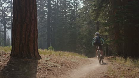 A-mountain-biker-rides-in-a-forest-3