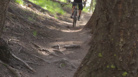 A-mountain-biker-pedals-through-a-forested-area-at-high-speed-2