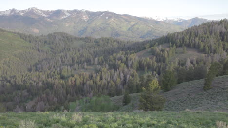 The-foothills-of-the-Sierra-Nevada-mountains