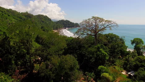 Beautiful-Aerial-Through-Jungle-Trees-And-Over-The-Coast-And-Beaches-Of-Costa-Rica