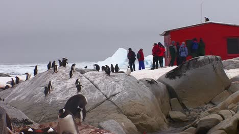 Scientists-visit-a-research-station-in-Antarctica-as-penguins-look-on