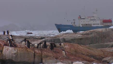 An-oceanic-research-vessel-floats-amongst-icebergs-in-Antarctica-as-penguins-look-on-2